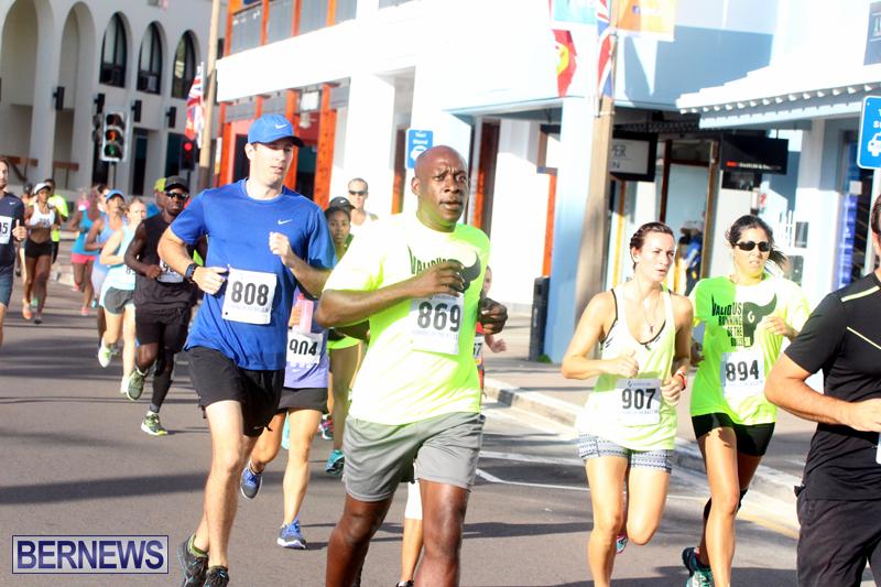 Running-of-the-Bulls-Bermuda-September-2015-6