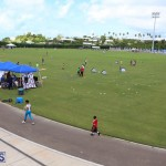 Youth Sports Expo Held At Sports Centre Bermuda September 2015 (2)