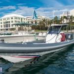 AC World Series Bermuda Oct 18 2015 Harbour (39)