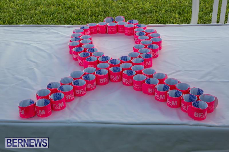 BFM-Breast-Cancer-Awareness-Walk-Bermuda-October-21-2015-14