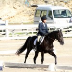 Bermuda Dressage Show October 3 2015 (10)