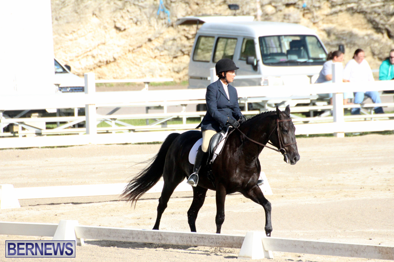 Bermuda-Dressage-Show-October-3-2015-10