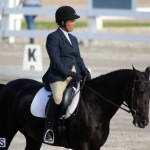 Bermuda Dressage Show October 3 2015 (16)