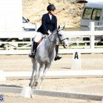 Bermuda Dressage Show October 3 2015 (17)