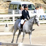 Bermuda Dressage Show October 3 2015 (18)