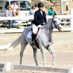 Bermuda Dressage Show October 3 2015 (19)