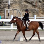 Bermuda Dressage Show October 3 2015 (3)