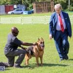 Dog Show Bermuda, October 24 2015-55