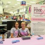 Gorhams Pink Bermuda, October 6 2015-1