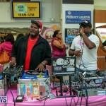 Gorhams Pink Bermuda, October 6 2015-10