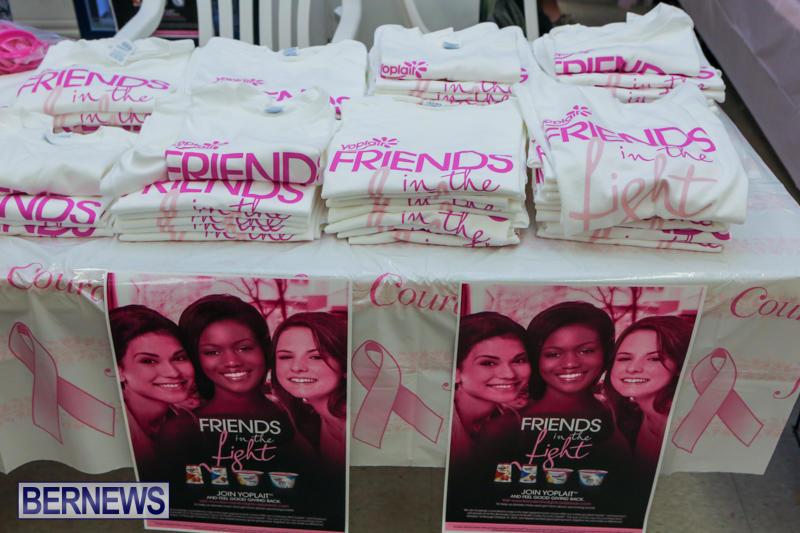 Gorhams-Pink-Bermuda-October-6-2015-23