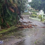 Hurricane Joaquin Bermuda, October 4 2015-24