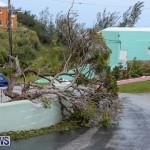 Hurricane Joaquin Bermuda, October 5 2015-11