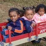 J&J Produce Pick Your Own Pumpkins Bermuda, October 23 2015-45