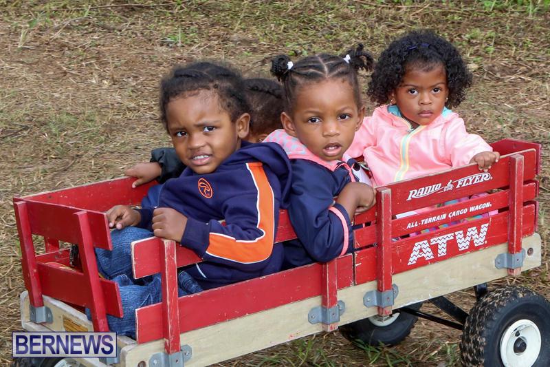 JJ-Produce-Pick-Your-Own-Pumpkins-Bermuda-October-23-2015-45