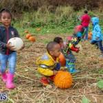 J&J Produce Pick Your Own Pumpkins Bermuda, October 23 2015-56