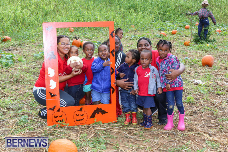 JJ-Produce-Pick-Your-Own-Pumpkins-Bermuda-October-23-2015-66