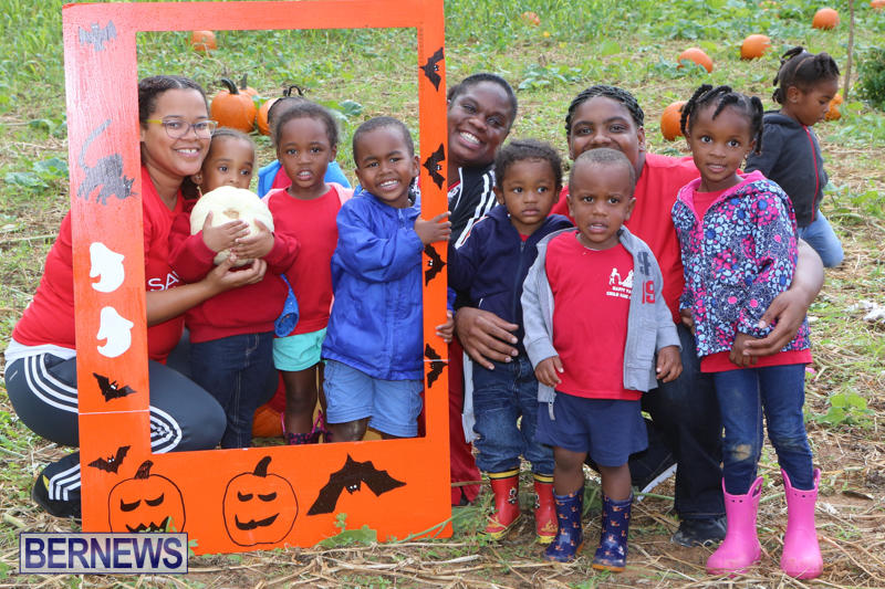 JJ-Produce-Pick-Your-Own-Pumpkins-Bermuda-October-23-2015-67