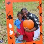 J&J Produce Pick Your Own Pumpkins Bermuda, October 23 2015-68
