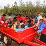 J&J Produce Pick Your Own Pumpkins Bermuda, October 23 2015-80