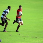 Rugby October 14 2015 (4)
