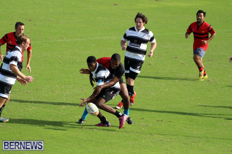 Rugby-October-14-2015-5