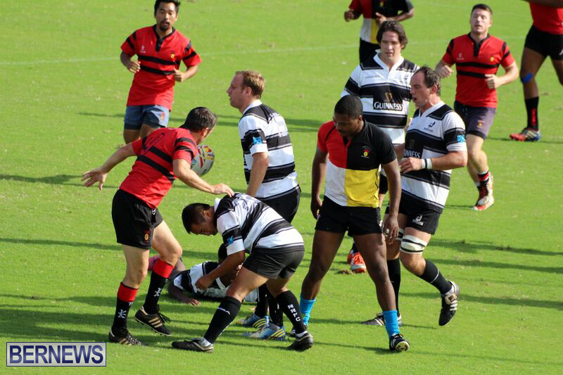 Rugby-October-14-2015-6