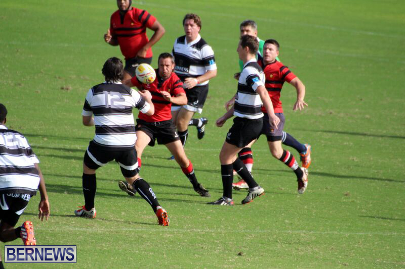 Rugby-October-14-2015-7