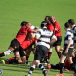 Rugby October 14 2015 (8)
