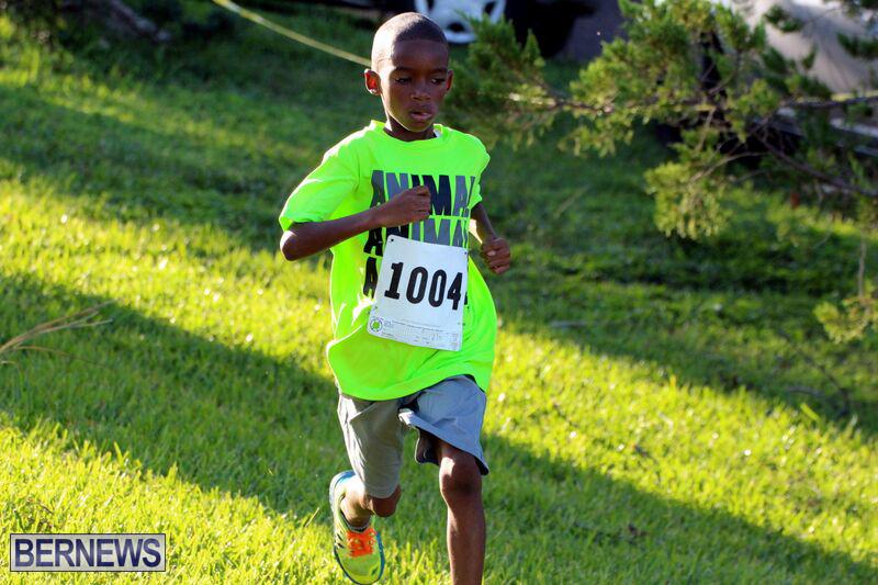 Run-October-14-2015-3
