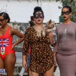 St George's Art Walk Fashion Show Bermuda, October 25 2015-w (77)