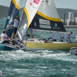 argo-group-gold-cup-sailing-159