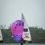 argo-group-gold-cup-sailing-174