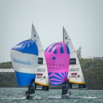 argo-group-gold-cup-sailing-175