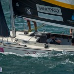 argo-group-gold-cup-sailing-19