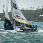 argo-group-gold-cup-sailing-36