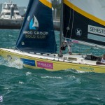 argo-group-gold-cup-sailing-45