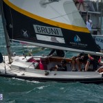 argo-group-gold-cup-sailing-68