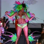 2016 Bermuda Heroes Weekend Launch Event, November 20 2015-23