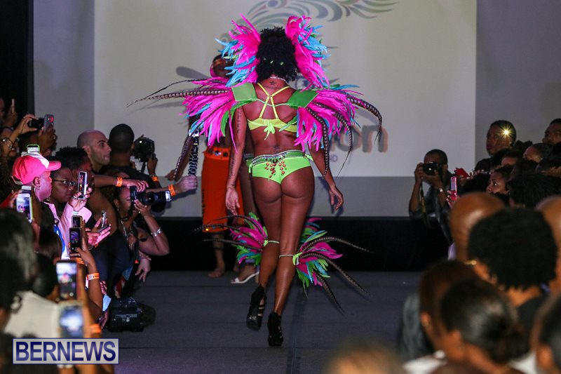 2016-Bermuda-Heroes-Weekend-Launch-Event-November-20-2015-24