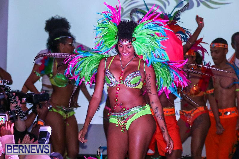 2016-Bermuda-Heroes-Weekend-Launch-Event-November-20-2015-26