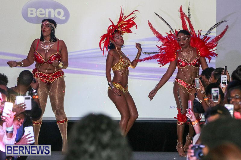 2016-Bermuda-Heroes-Weekend-Launch-Event-November-20-2015-27