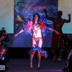 2016 Bermuda Heroes Weekend Launch Event, November 20 2015-50