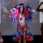 2016 Bermuda Heroes Weekend Launch Event, November 20 2015-51