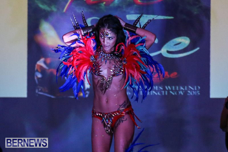 2016-Bermuda-Heroes-Weekend-Launch-Event-November-20-2015-52