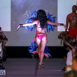 2016 Bermuda Heroes Weekend Launch Event, November 20 2015-53