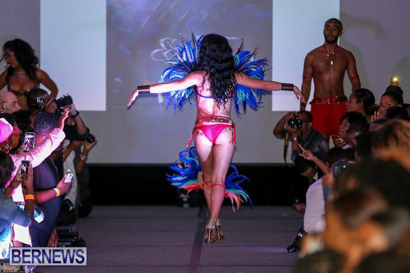 2016-Bermuda-Heroes-Weekend-Launch-Event-November-20-2015-53