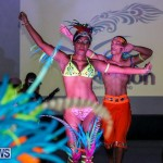 2016 Bermuda Heroes Weekend Launch Event, November 20 2015-6