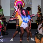 2016 Bermuda Heroes Weekend Launch Event, November 20 2015-67