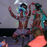 2016 Bermuda Heroes Weekend Launch Event, November 20 2015-96